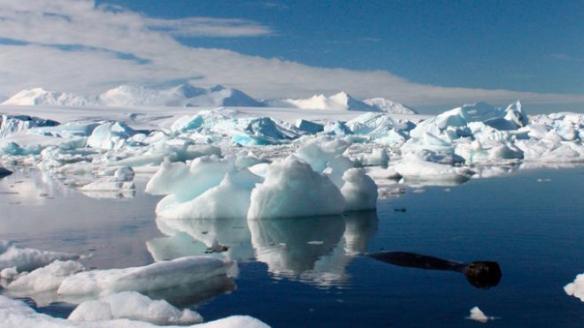 icebergs_antartica2